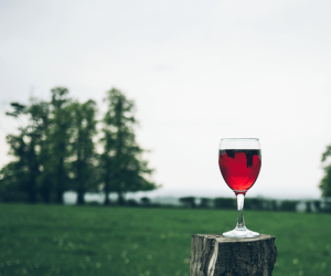 Complete Guide to the Most Common Red Wines